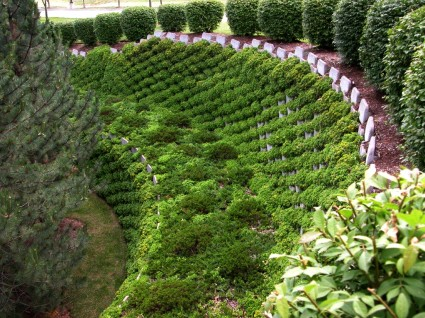Why Green Walls Using Green Walls For Retaining Wall